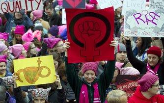 Den následující po inauguraci nového amerického preizidenta Donalda Trumpa vyšly ve Washingtonu tisíce žen do ulic. Protestovali za ženská práva a proti šovinismu.