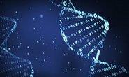 Microsoft sází na syntetickou DNA. Zkusí ji proměnit v úložiště budoucnosti