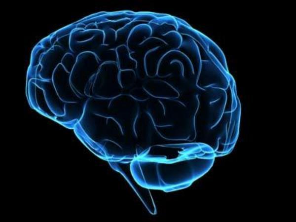 mozek, neurologie