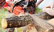 Koza na řezání motorovou pilou – je lepší ji koupit nebo vyrobit?