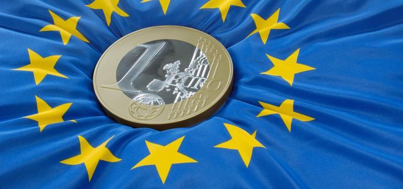 *Evropská unie, EU, euro