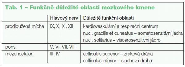 Funkční anatomie a neurologické projevy mozkových metastáz