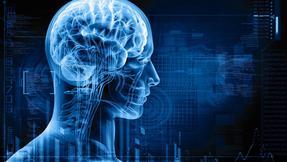 mozek, neurologie, psychiatrie