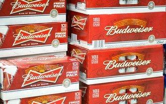 Plechovky piva Budweiser