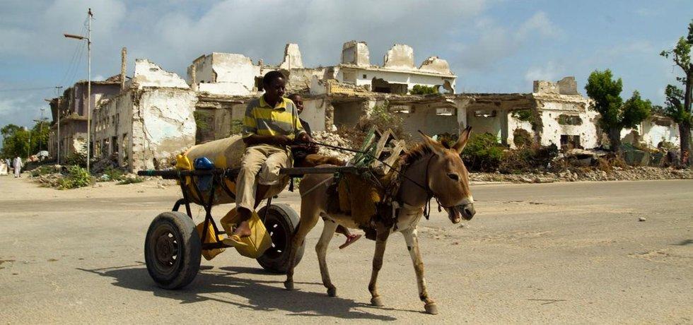 Oslem tažený povoz ve válkou poničeném Mogadišu
