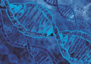 genetika, DNA