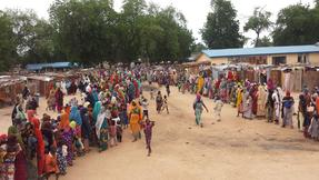 MSF, Lékaři bez hranic, Nigérie