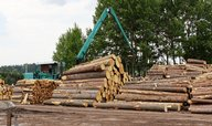 Věřitelé Less & Forest dostanou peníze, soud povolil prvních 138 milionů