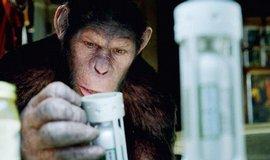 Pozoruhodný výkon. Herec Andy Serkins spolu s počítačovou animací dokázal vtisknout inteligentnímu šimpanzi Caesarovi širokou škálu emocí