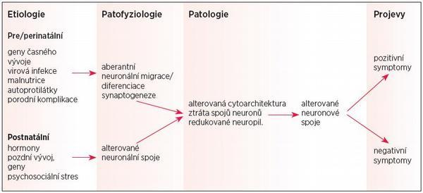 Vývojové aspekty schizofrenie a včasná identifikace schizofrenní symptomatiky