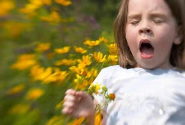dítě, alergie, pyl