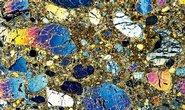 Spojenci. Rostlina Pandanus candelabrum zřejmě v místech, kde se vyskytuje kimberlit – průvodní příznak diamantů – nachází důležité živiny. Vyleštěná hornina na snímku ukazuje své vnitřní bohatství