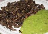 Cvrčci s guacamole