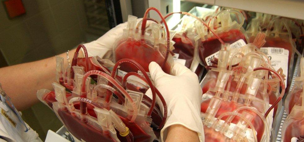 krevní plazma