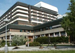 Nemocnice Na Homolce, Homolka