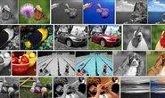 Umělá inteligence měla vybarvit černobílé obrázky