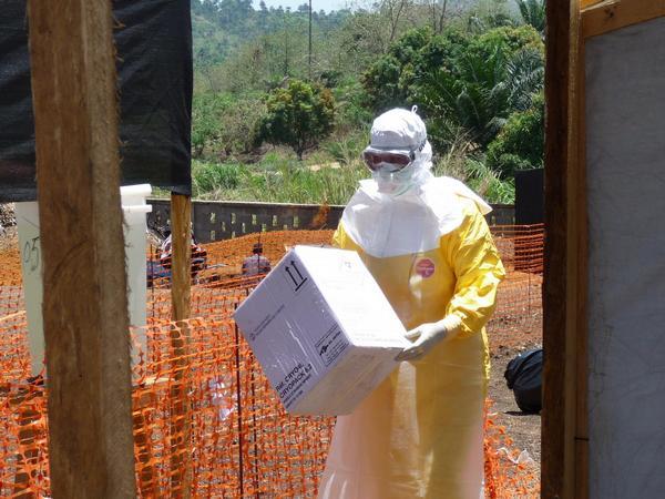 Lékaři bez hranic, MSF, Uganda, ebola