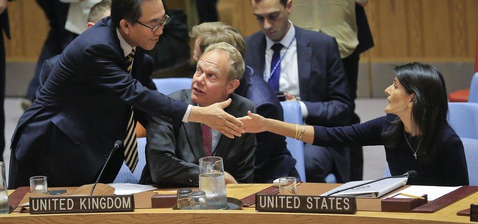 OSN má jasno. Režim Bašára Asada spáchal válečné zločiny