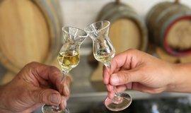 Alkohol, pálenka - ilustrační foto