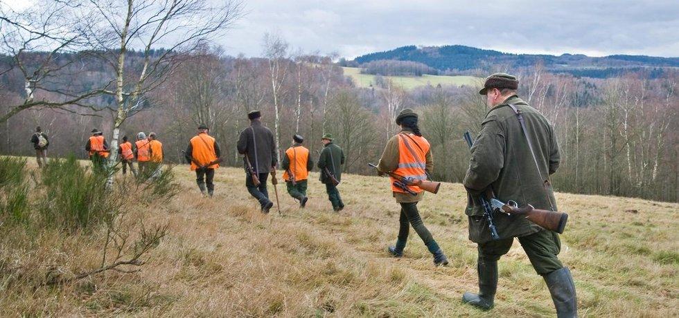 Opatření mají myslivce motivovat ke zvýšenému odlovu divokých prasat na Zlínsku.
