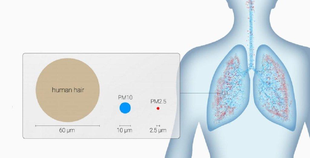 Polétavý prach způsobuje onemocnění plic a kardiovaskulárního systému.