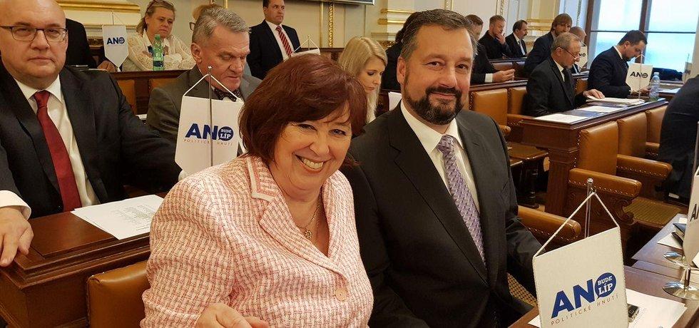 Poslanec za hnutí ANO Pavel Růžička