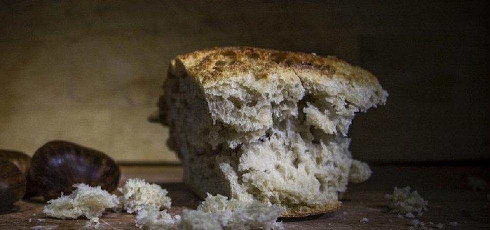 Co se starým chlebem? Hlavně jim nekrmit potkany.