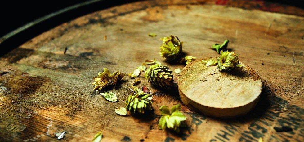 Chmel, pivovar Trautemberk