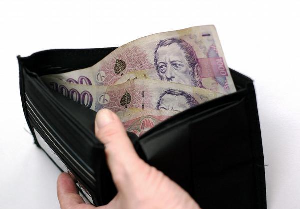 peníze, peněženka