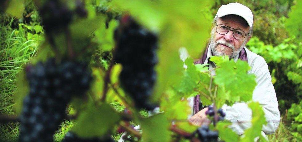 Vinař, ilustrační foto
