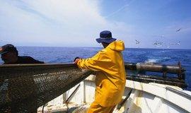 Rybáři ve Francii, ilustrační foto