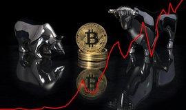 Bitcoin a býčí trh, ilustrační foto