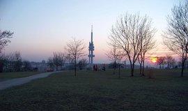 Žižkovský vrch Parukářka