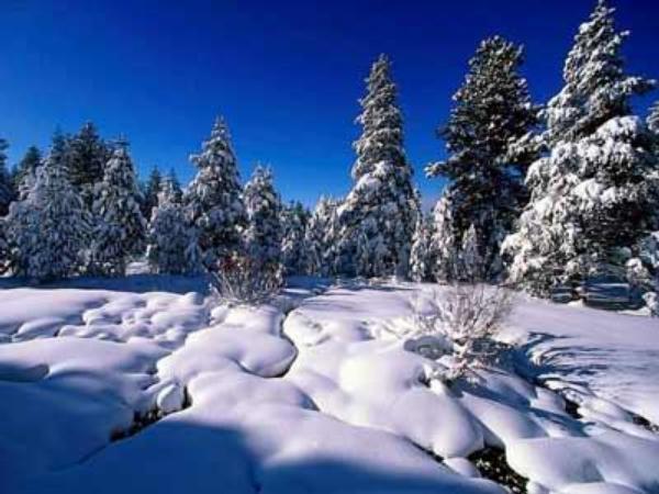 zima, vánoce