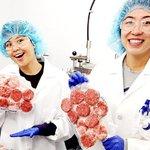 Firma Impossible Foods hodlá vyrábět jídlo, které chutná jako maso, ale je složeno pouze z rostlinných ingrediencí.