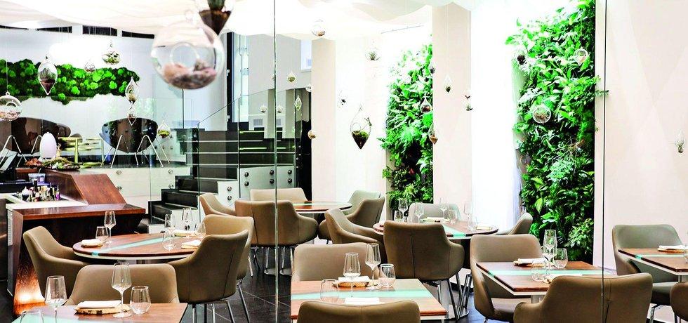 Levitate Restaurant