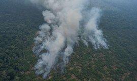 Požár pralesa, ilustrační foto