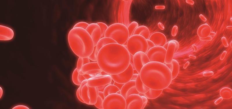 *krev, krvinky, sraženina, trombus, céva, žíla