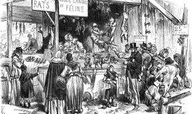 Prodej psů na trhu - historická ilustrace