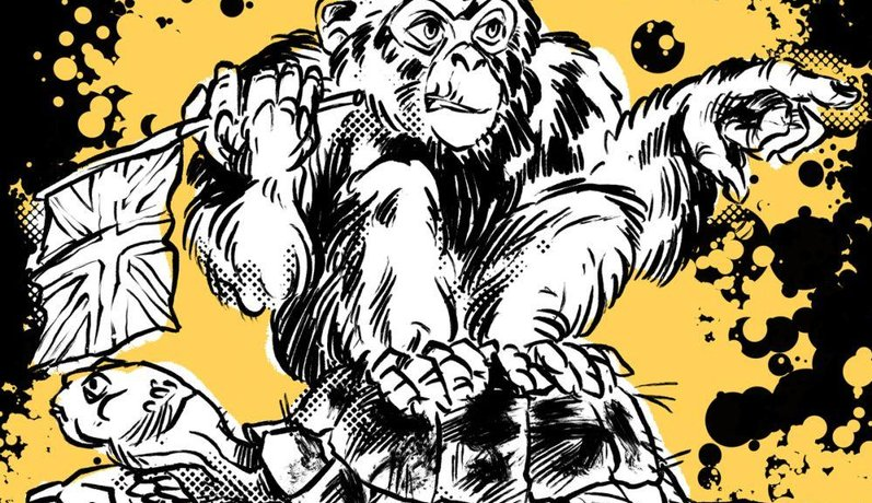 Ilustrace k eseji O šimpanzích a želvách