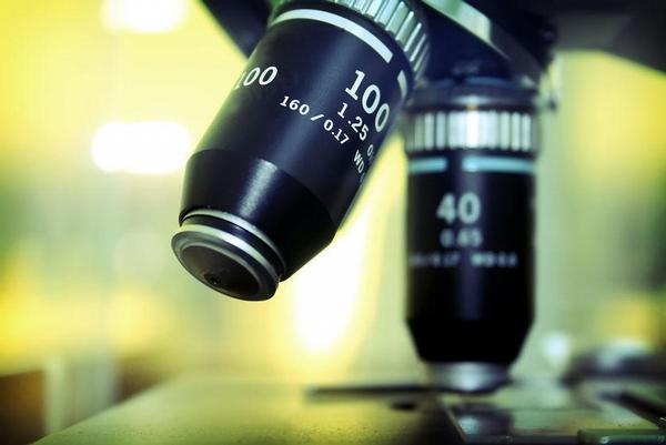 věda, laboratoř, výzkum, mikroskop