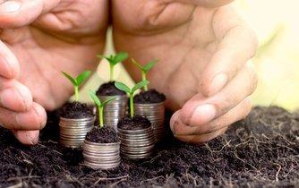 Udržitelný rozvoj, ilustrační foto