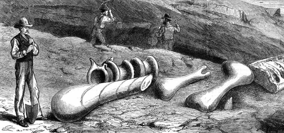 Soupeření dvou paleontologů na Divokém západě vedlo k objevu desítek nových dinosaurů
