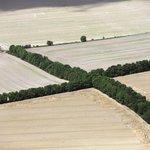 Zemědělská krajina, ilustrační foto