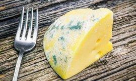 Sýr s plísní, ilustrační foto