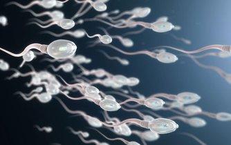 Genetika, ilustrační foto
