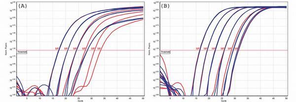 PCR vyšetření tekutiny z bronchoalveolární laváže pro detekci invazívních mykotických infekcí