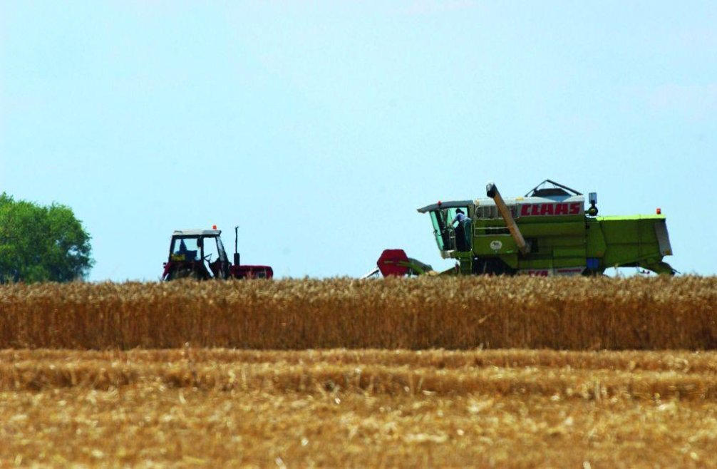 Agrofert dodával zásoby obilí Správě státních hmotných rezerv