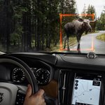 Nové Volvo V90 dokáže detekovat velké zvíře a v případě hrozící srážky začít brzdit