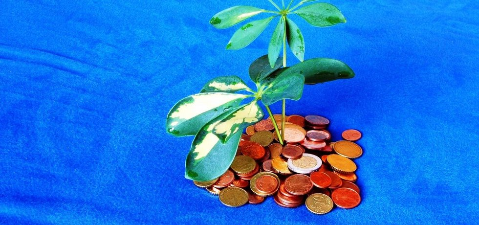 Ilustrační foto, daňový ráj